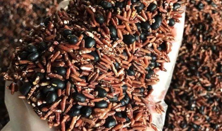 hạt gạo lứt