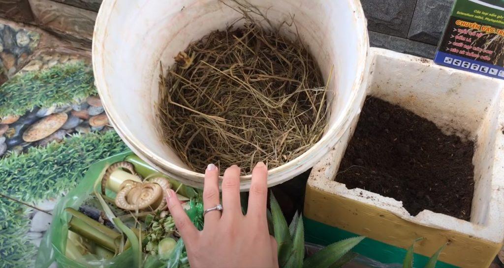 Cách ủ phân hữu cơ không gây mùi khó chịu ngay tại nhà