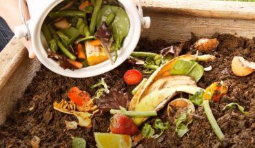 """Cách ủ phân hữu cơ - Bật mí cách làm """"siêu đơn giản"""" cho người bắt đầu"""
