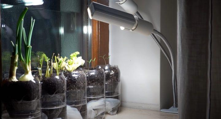 """7 cách trồng rau bằng chai nhựa thật đơn giản mà """"ấn tượng"""""""
